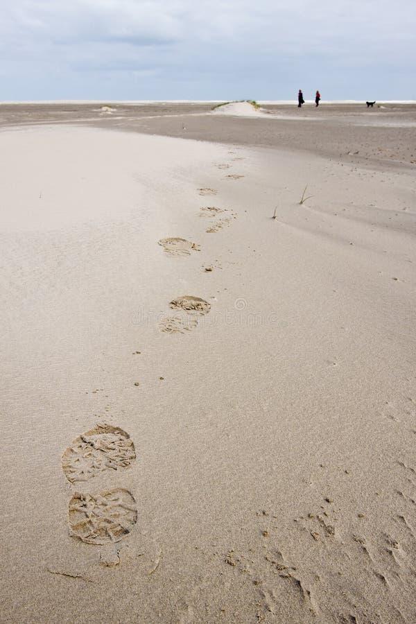 Fußdruck der Frau gehend in die Sanddünen stockbilder
