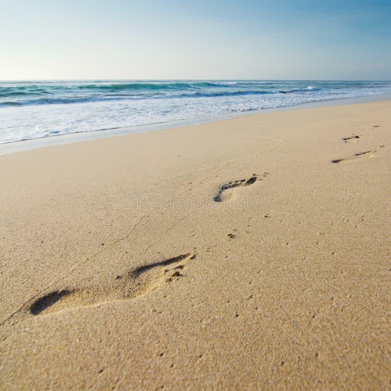 Fußdrucke auf dem Strand stockbilder
