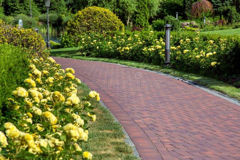 Fußgängerbürgersteig im Garten mit grünen Rasen stockfoto