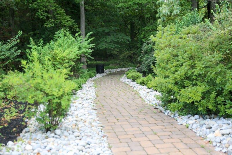 Fußgängerweg im Garten, grünes Gras stockfotografie