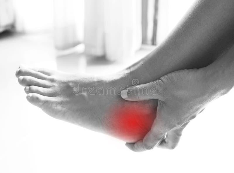 Fußschmerz, Fersenschmerz von der Sehnenentzündung und Übergewicht stockbilder