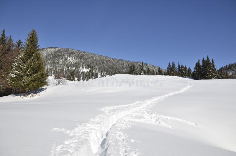 Fußweg im Großen Schnee stockbild