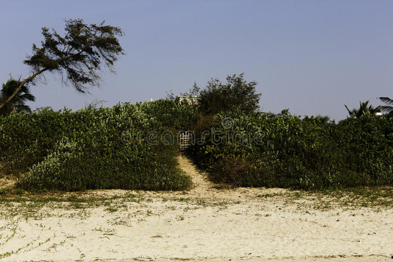 Fußweg zum Tor auf Paradiesstrand stockbild