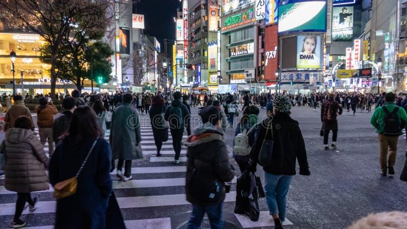 Fußgänger kreuzen an Shibuya-Überfahrt am Abend stockfoto