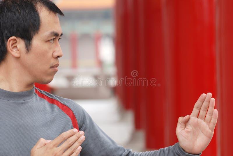 Fu chinês do kung imagens de stock