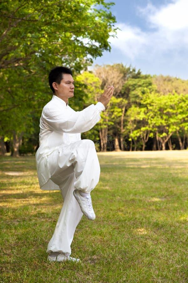Fu de Kung photographie stock libre de droits