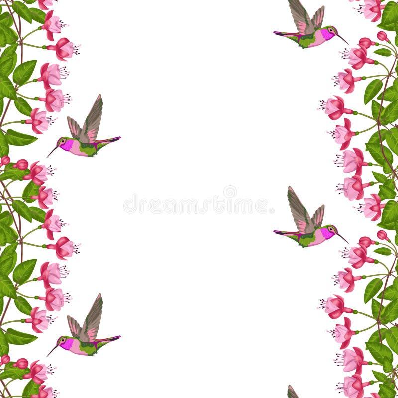 Fuchsia and hummingbird seamless border stock vector illustration download fuchsia and hummingbird seamless border stock vector illustration of postcard design 91402485 m4hsunfo