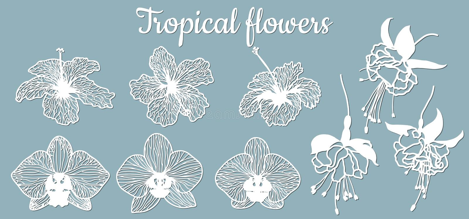 Fuchsia, Orchid, hibiscus. Vector illustration. Set of paper flower, stickers. Laser cut. Set template for laser cutting and. Plotter. Vector illustration. Set royalty free illustration
