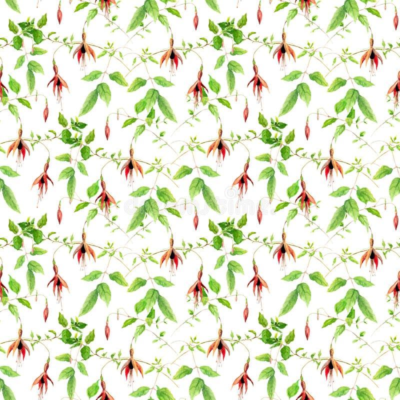 Fuchsiakleurig bloemen Naadloos BloemenPatroon watercolor vector illustratie
