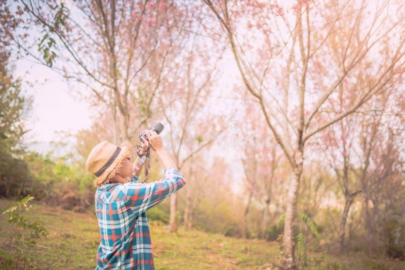 Fucilazione del fotografo nella foresta con la natura fotografia stock libera da diritti