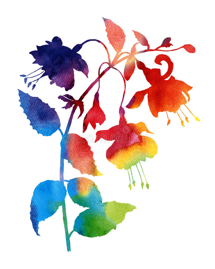 Fucsia abstracto de la acuarela de la flor libre illustration