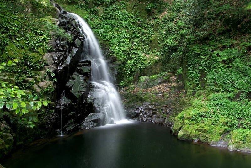 FUdo-daki Wasserfall im Tal von Mie, Japan lizenzfreie stockfotos