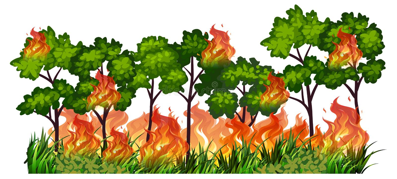 Fuego aislado de la naturaleza del árbol libre illustration
