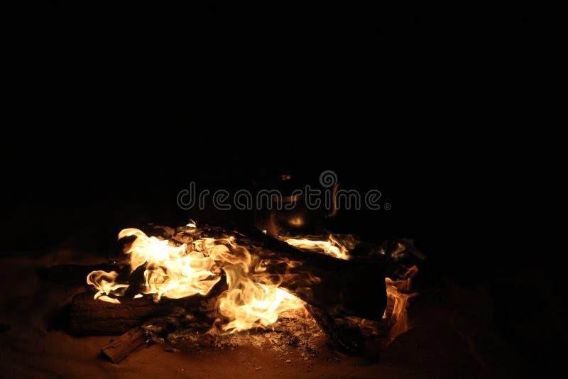 Fuego ardiendo en viaje del safari fotografía de archivo