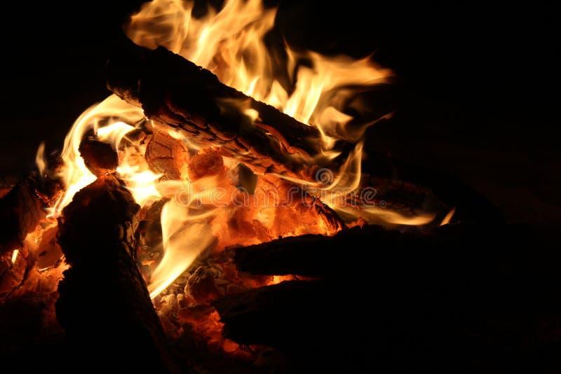 Fuego ardiendo en viaje del safari foto de archivo libre de regalías
