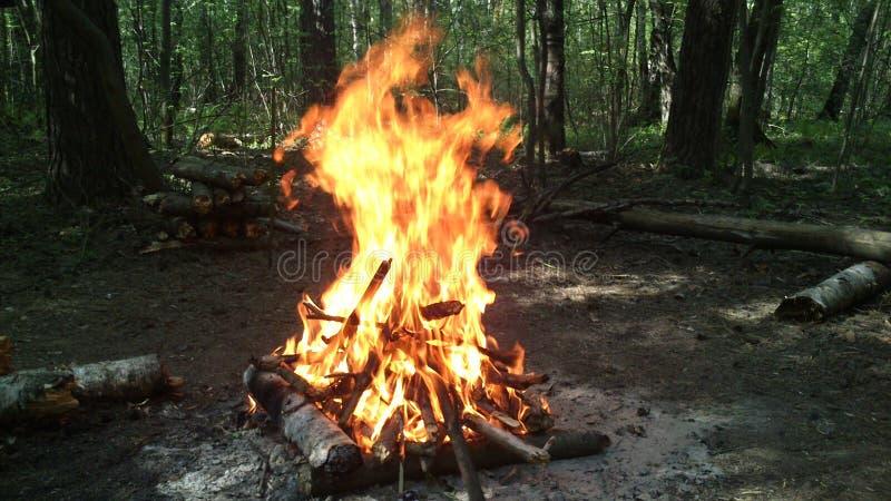 Fuego de la madera imagen de archivo