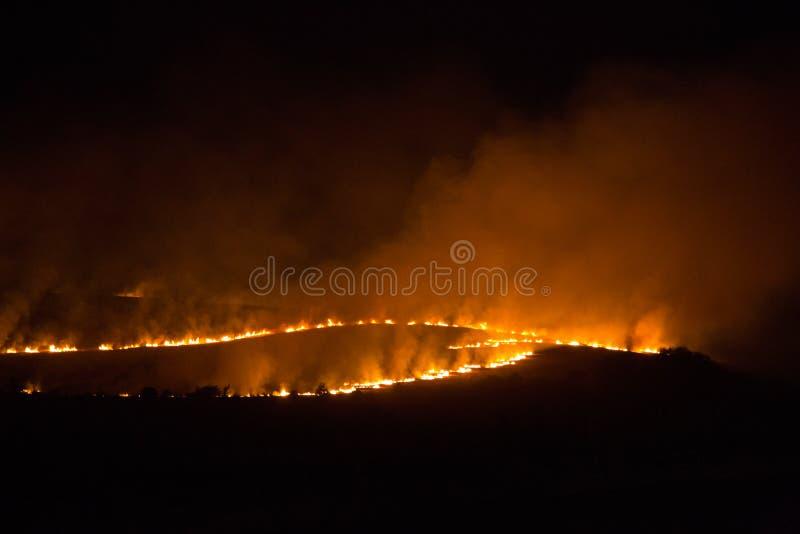 Fuego de la noche en un campo imagenes de archivo