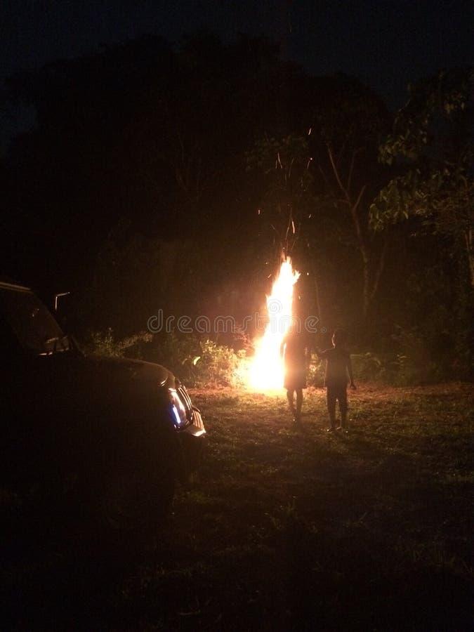 Fuego de la noche de la selva foto de archivo libre de regalías