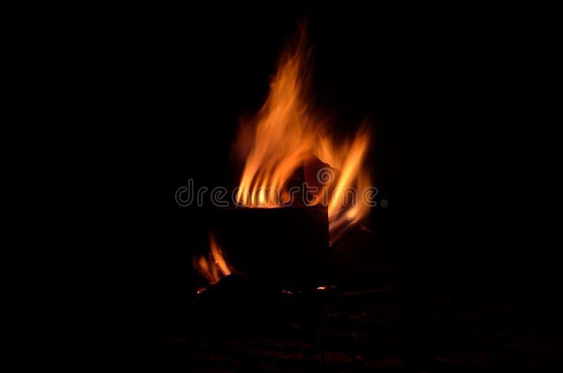 Fuego de registro ardiente brillante del abedul en naturaleza nevosa del invierno fotografía de archivo