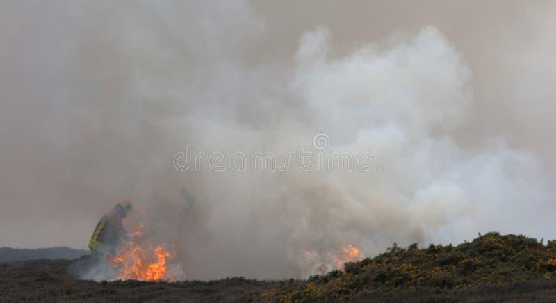 Fuego del brezo fotos de archivo