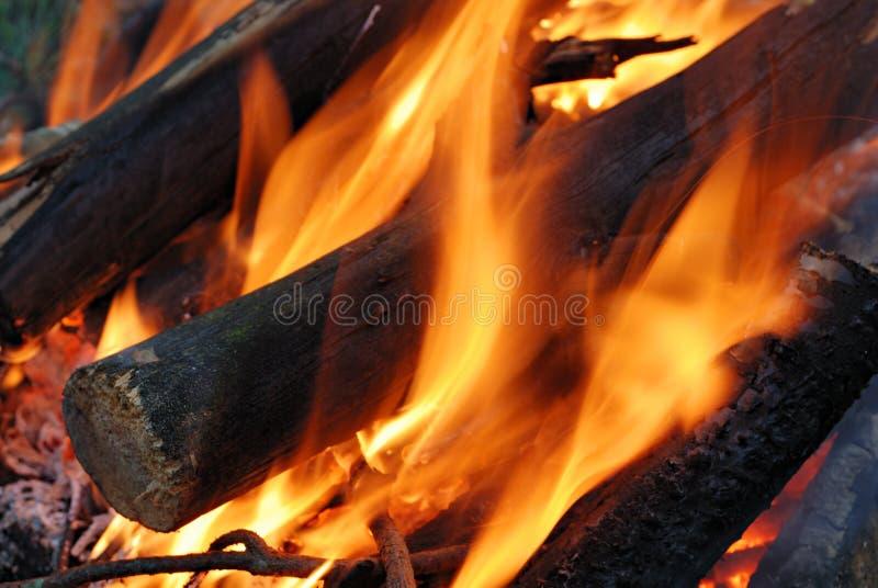 Fuego del campo con los registros llameantes fotografía de archivo
