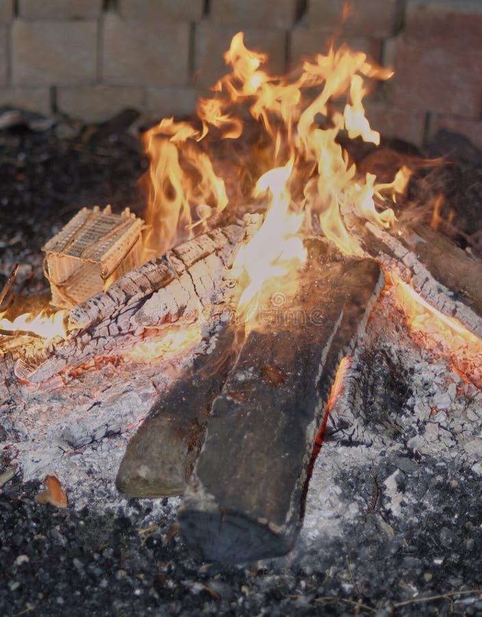 Fuego del campo con madera y cenizas ardientes foto de archivo libre de regalías