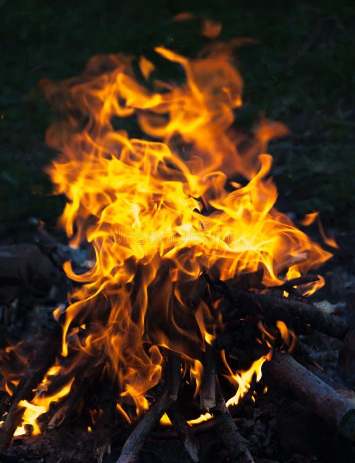 Fuego del campo en la noche imagen de archivo