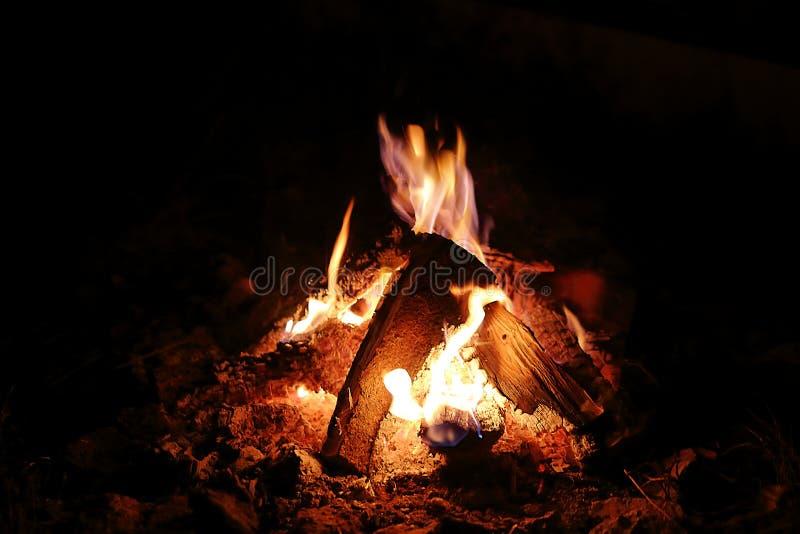 Fuego del campo que quema i fotografía de archivo libre de regalías