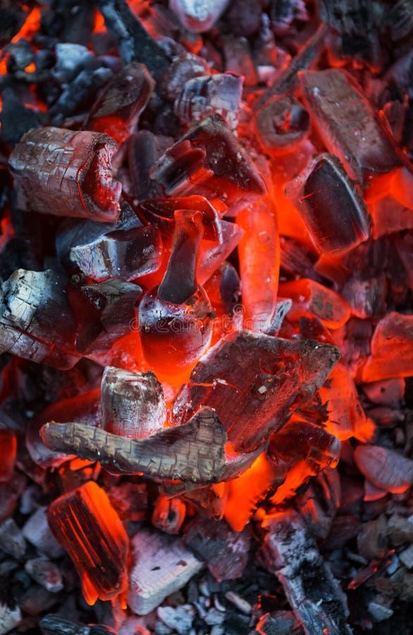 Fuego del carbón de leña fotos de archivo