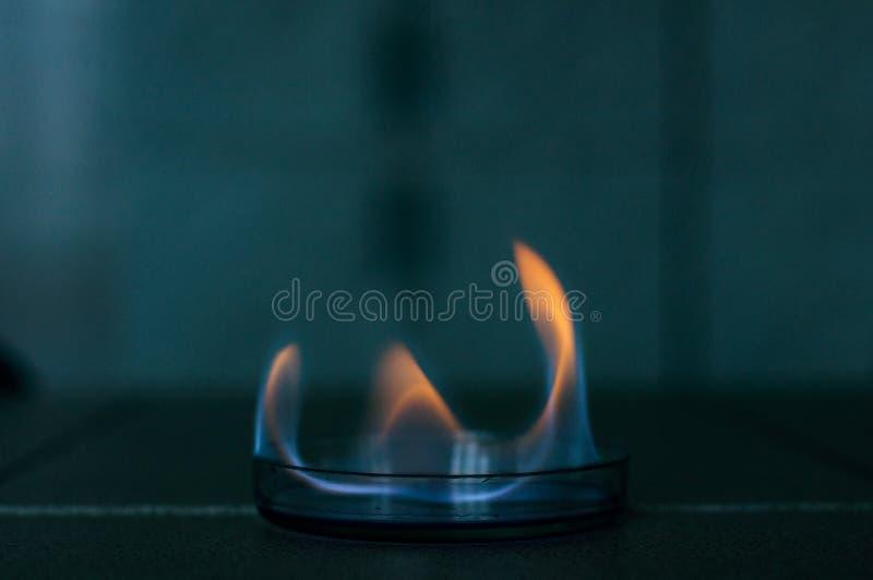 Fuego del etanol en la placa de cristal del laboratorio fotos de archivo