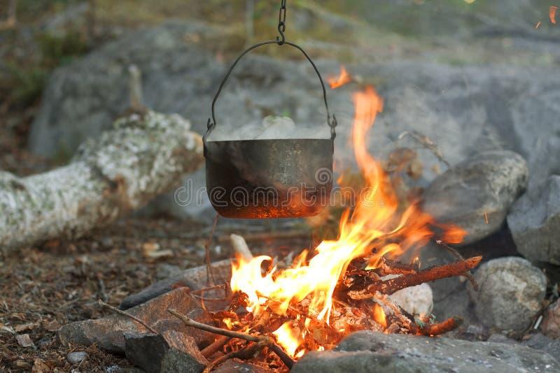 Fuego en las maderas foto de archivo libre de regalías