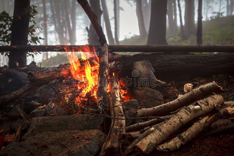 Fuego en madera de niebla fotos de archivo libres de regalías