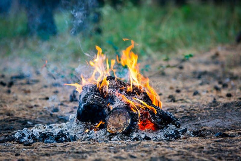 Download Fuego en prado foto de archivo. Imagen de chimenea, cubo - 100532720
