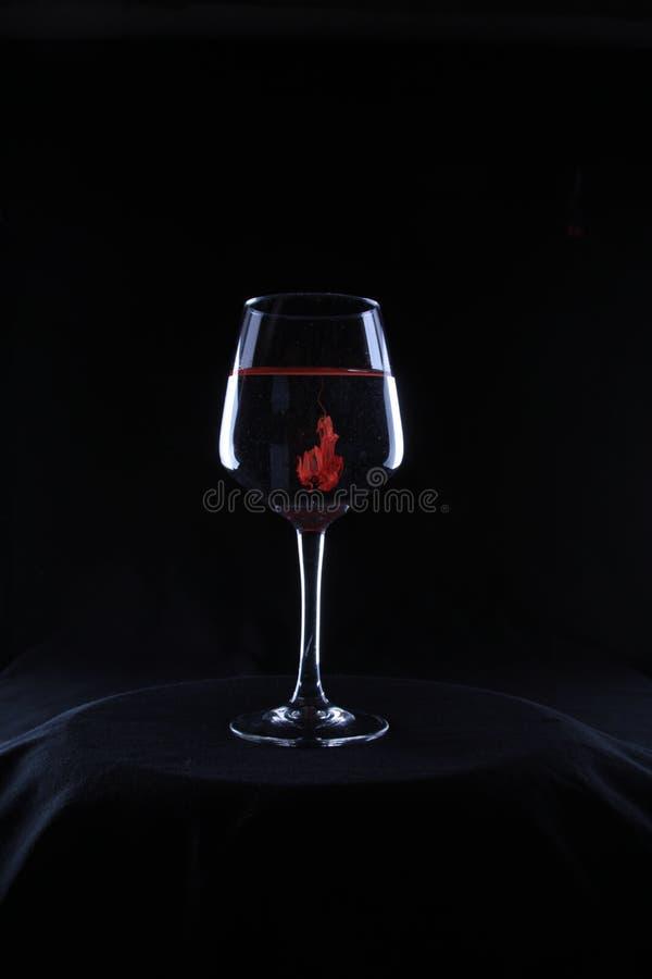 Fuego en un vidrio de agua foto de archivo libre de regalías
