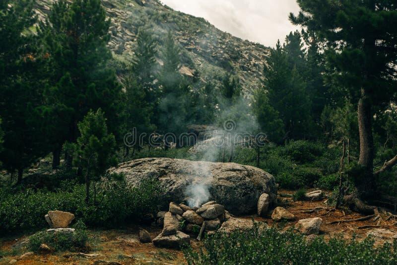 fuego extinguido en el bosque conífero del parque nacional imágenes de archivo libres de regalías
