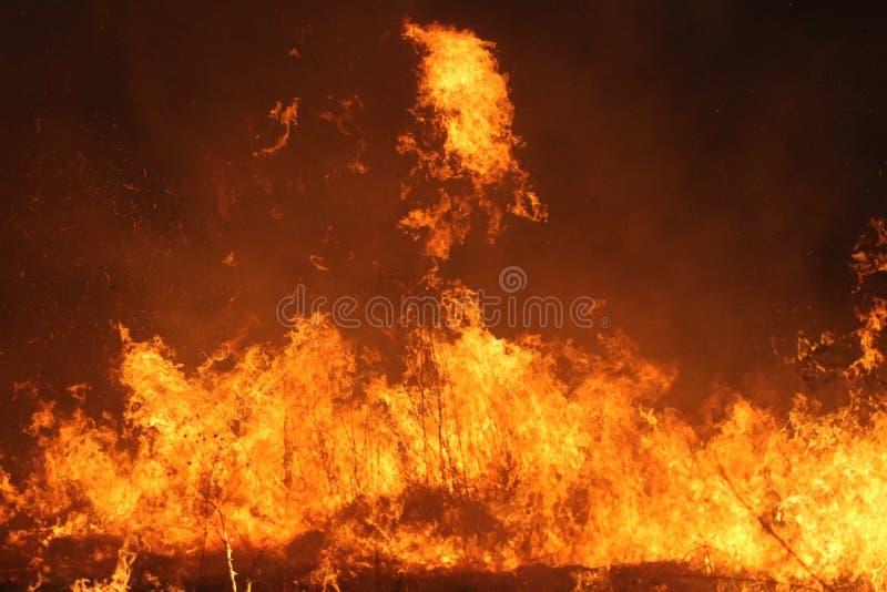 Fuego manejado de la pradera fotografía de archivo