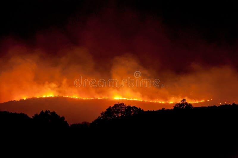 Fuego salvaje en la noche fotos de archivo libres de regalías