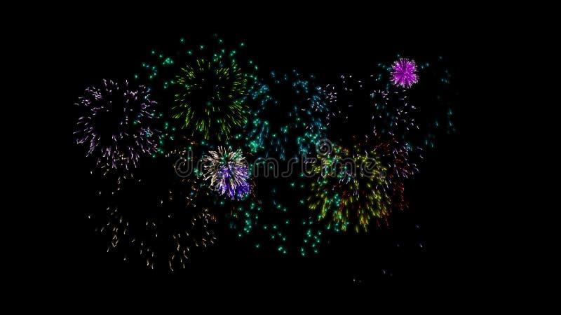 Fuegos Artificiales Animados Metrajes Video De Concepto Elegante