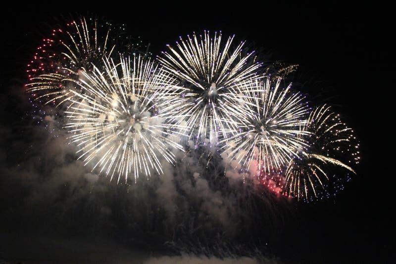 Fuegos artificiales coloridos brillantes de la noche de los fuegos artificiales imagen de archivo