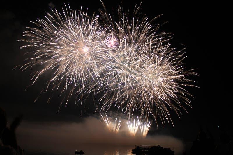 Fuegos artificiales coloridos brillantes de la noche de los fuegos artificiales imágenes de archivo libres de regalías