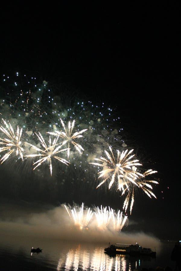 Fuegos artificiales coloridos brillantes de la noche de los fuegos artificiales fotos de archivo libres de regalías