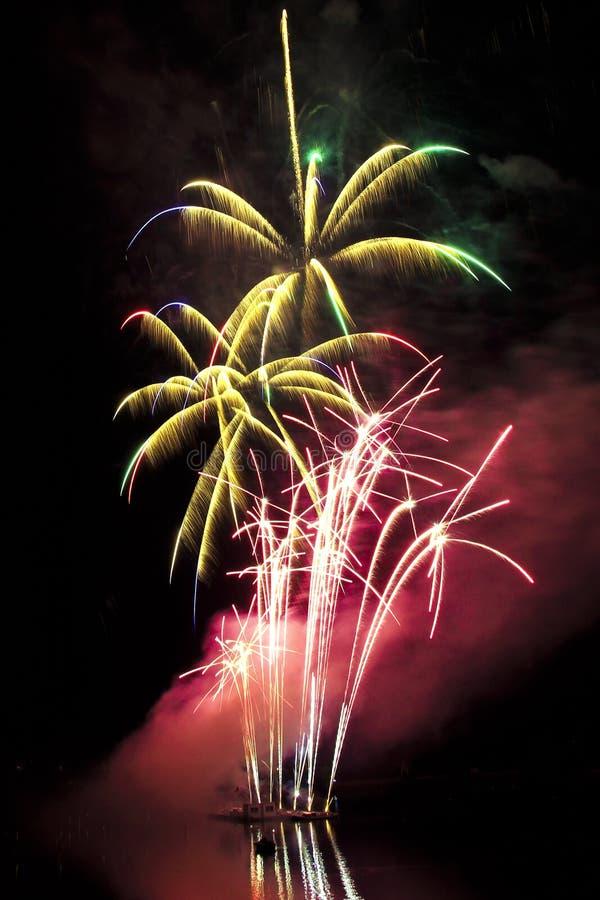 Fuegos artificiales coloridos grandes en la forma de las palmeras imagenes de archivo