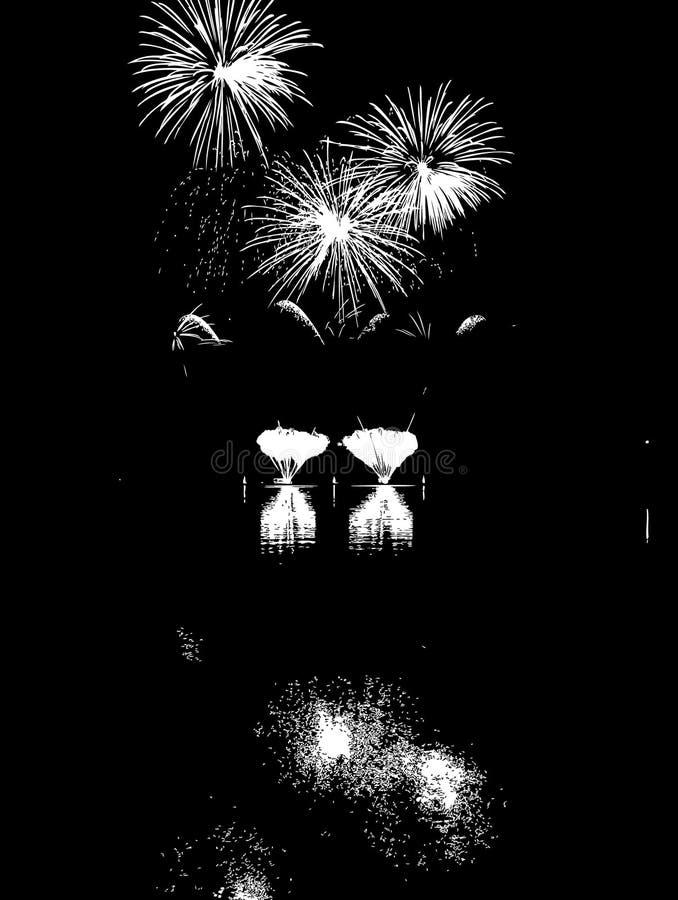 Fuegos artificiales del vector con la reflexión en el lago fotos de archivo