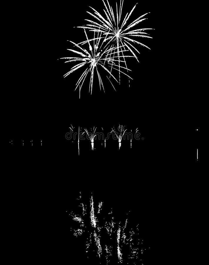 Fuegos artificiales del vector con la reflexión en el lago imagen de archivo libre de regalías