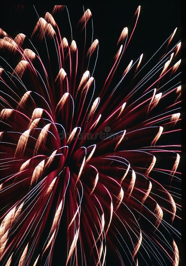 Fuegos artificiales el 4 de julio fotos de archivo