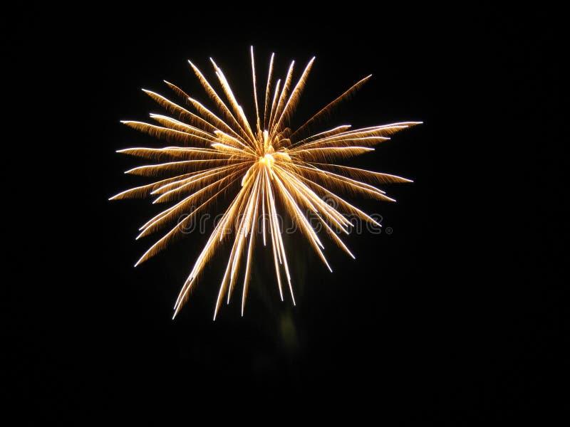 Fuegos artificiales en el cielo imagen de archivo libre de regalías
