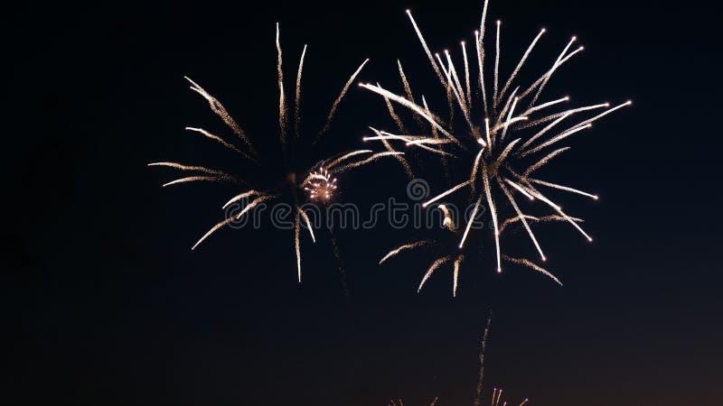 Fuegos artificiales en el día de fiesta del día de la ciudad, explosiones grandes del saludo en el cielo nocturno imagen de archivo libre de regalías