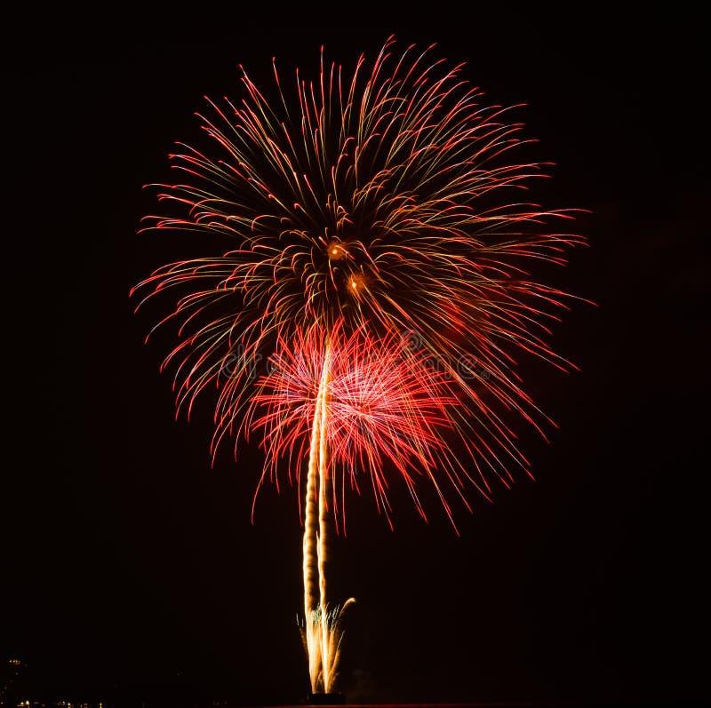 Fuegos artificiales en la noche foto de archivo libre de regalías
