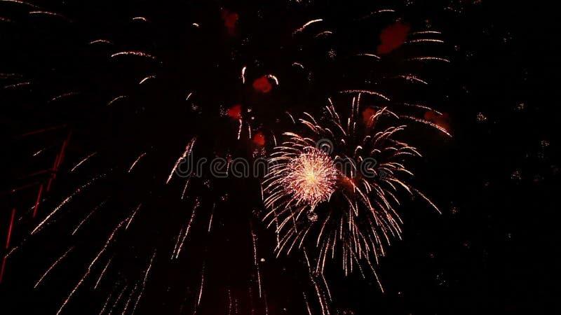 Fuegos artificiales grandes para el día de fiesta almacen de metraje de vídeo