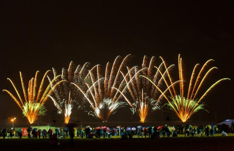 Fuegos artificiales hermosos imágenes de archivo libres de regalías